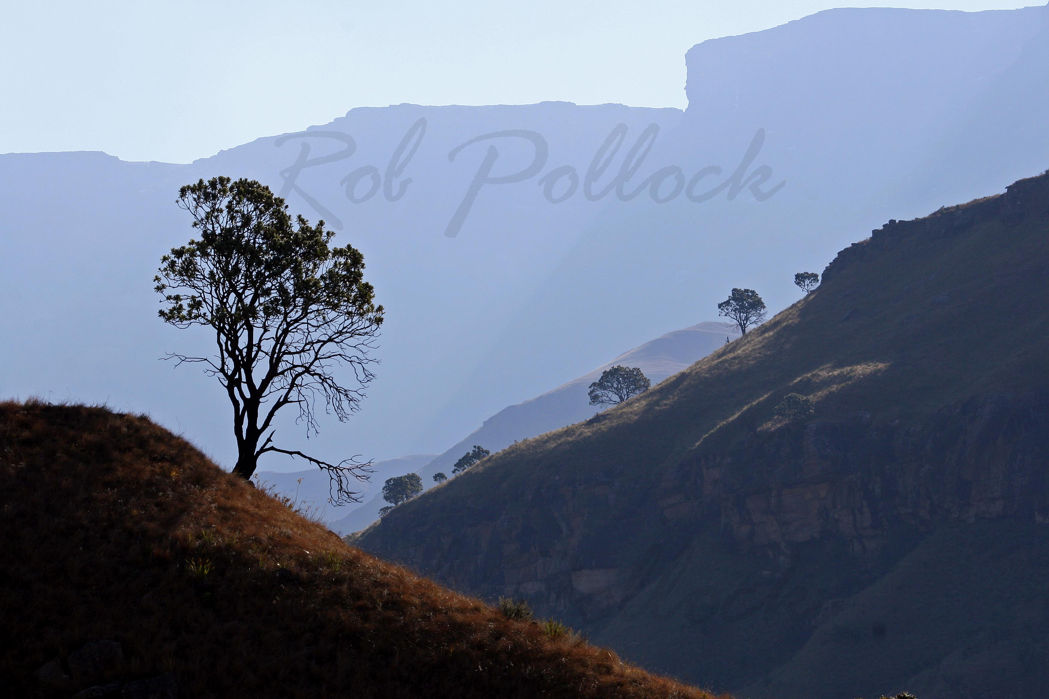 Foothills of the drakensburg, Kwa-Zulu Natal